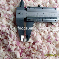 New Crop High Quality Frozen Onion Diced