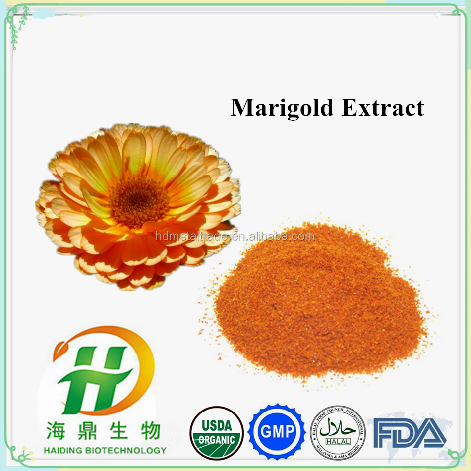 Marigold Extract Powder / Best feed for Chickens / Animal Feed lutein Powder