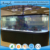 Ecological fish tank