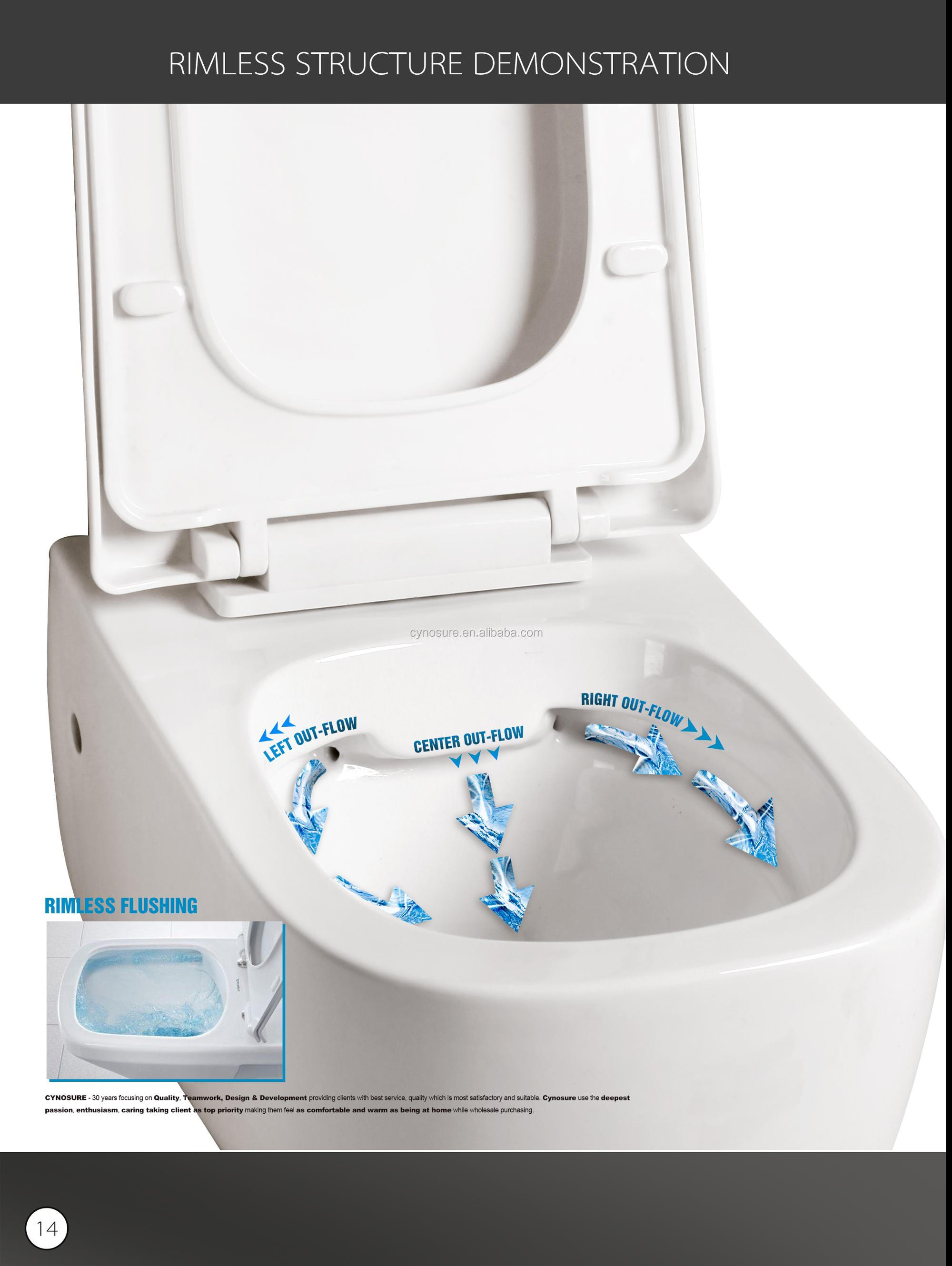 10 YRS WARRANTY RIMLESS, TORNADO Ceramic Wall Hung Toilet in Regular, Sensor, Intelligent, Disabled style
