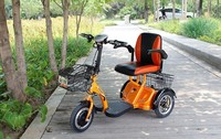 for adults Electric Tricycle low price
