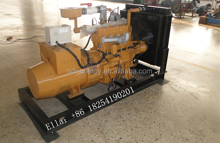 1 Monofase 3kw 5kw Generatore di Gas Metano Biogas Gruppo Elettrogeno-Generatori a turbina a gas ...