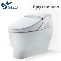 Gizo LZ-0702 toilets with built-in bidet computerized toilet bidet