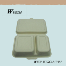 FDA approved disposable food packaging take-away box