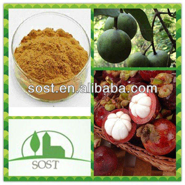 ISO Certificated and High Quality Mangosteen Rind Extract
