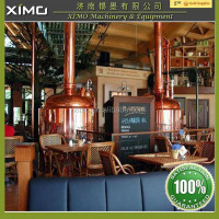 Luxury Mini Beer Brewery Equipment Used