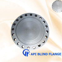 China manufacturer ANSI B16.47 API blind steel flange with best price