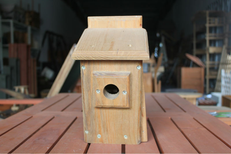 Best and hottestwooden bird house with different image design