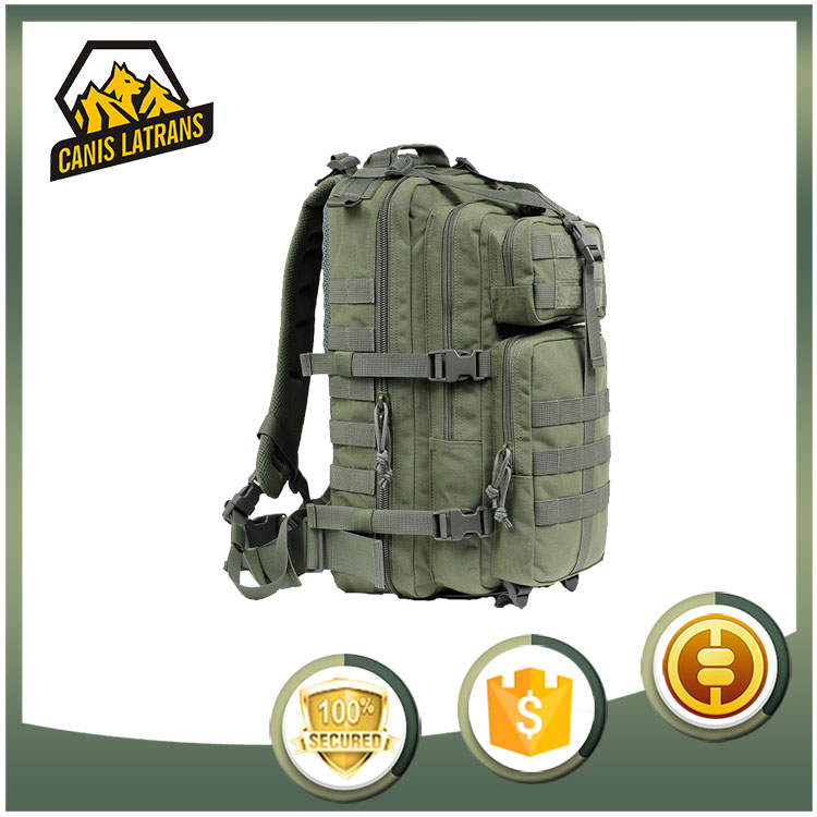 Hot army outdoor hiking bag function molle system for sports/camping/hunting/fishing military tactical backpack bag CL5-0066