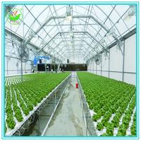 Modern Agriculture Hydroponics Greenhouse For Vegetable