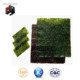 japanese foods wholesale seasoned yaki sushi seaweed nori