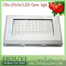 factory promotion top quality 300w 150w cheap led grow lights from Shenzhen manufacturer