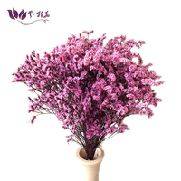 Preserved caspea Superior quality preserved flower DIY projects preserved flower bouquet