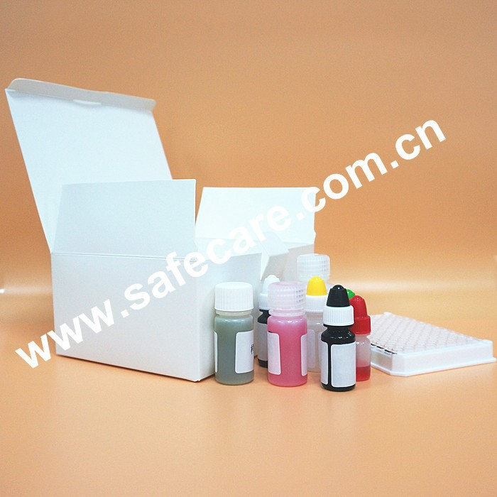Accurate with High quality Diagnostic Test Kit for Syphilis (TP) ELISA kit