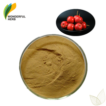 Maslinic acid leaf powder fresh whitethorn berry extract best hawthorn supplement