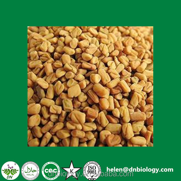 100% Natural Fenugreek P.E. Fenugreek Seed Extract 20% 4-hydroxyisoleucine