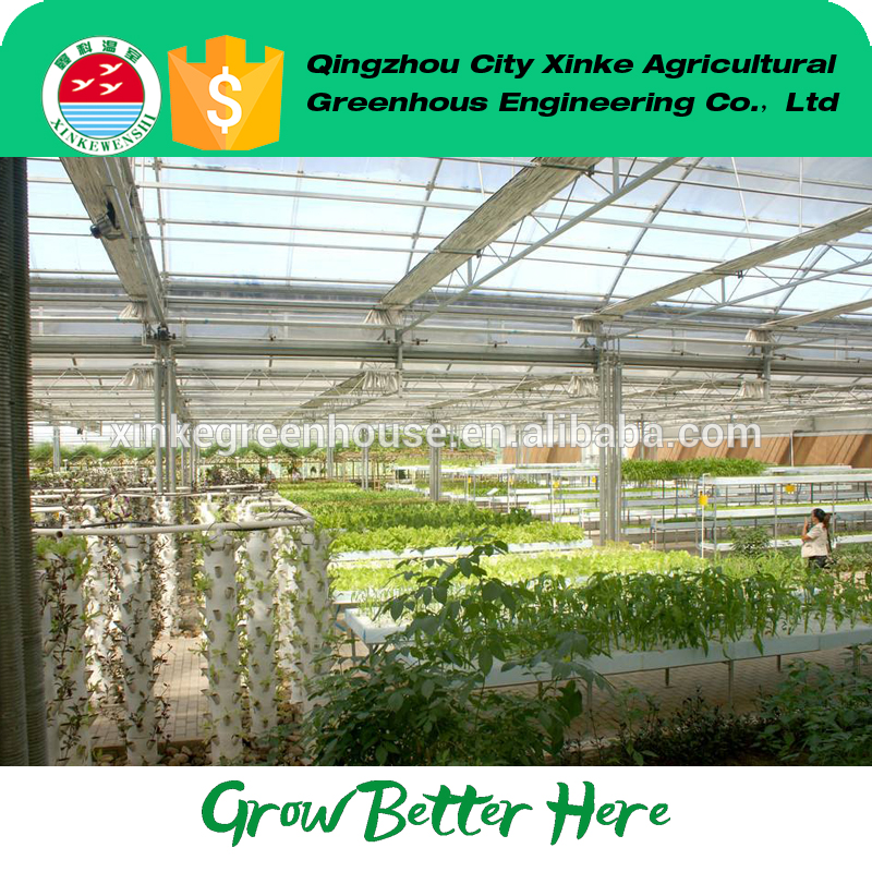 best price galvanized green house tomato farming With Good After-sale Service