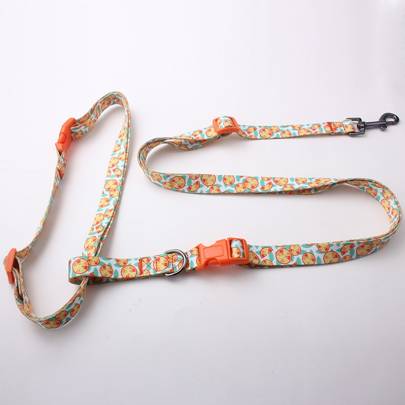 Best Products To Import To USA Custom Personalized Hands Free Dog Leash