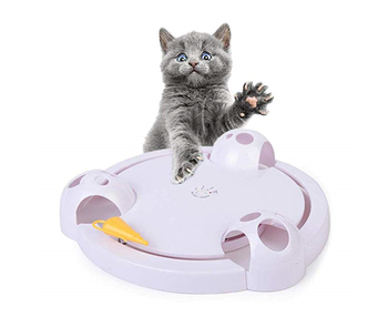 factory supply AS SEEN ON TV Automatic pet toys with cat catch mice amusement with 2 hours replied