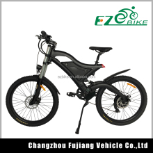 wholesale eco 21-26 inch 48v 500w fastest electric bike price