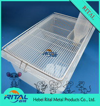 Eco-Friendly Feature M-4 Golden Ground Mouse Feeding Cage