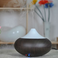 2013 new house & office aroma diffuser better than high capacity storage battery