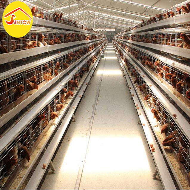 Affordable And Durable Low Price Design Layer Chicken Cages For Sale