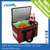 New arrival hot sale custom radio cooler bag with insulated effect