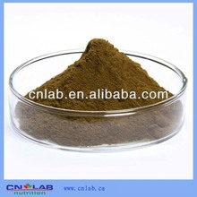GMP/Haccp/ISO9001 Factory Provide Best Natural Tribulus Terrestris Extract Powder 60% Saponins
