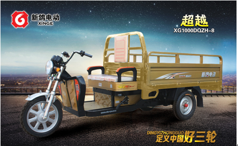 China adult electric bike tricycle /electric three wheel cargo motorcycle for sale in South Asia