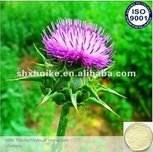 High Quality Free Sample Milk Thistle Extract Powder