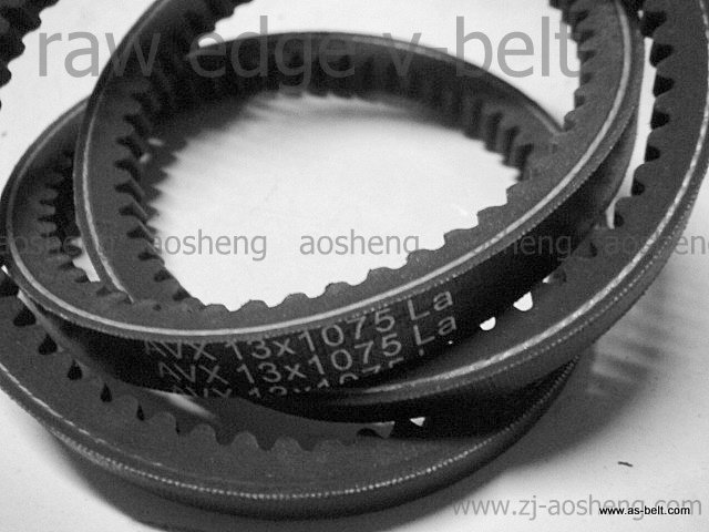 auto cogged/Raw edge V-belt 13x975