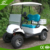 4KW 48V Curtis 2 seater electric cheap gas powered golf cart