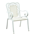 outdoor chair, modern chair, outdoor plastic chair(TG0126T-12)