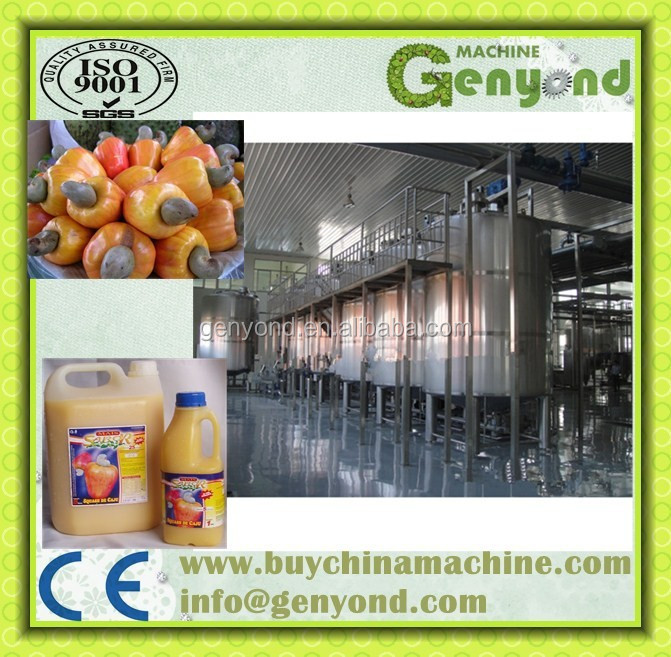 Stainless steel cashew apple juice making machine / cashew apple juicing machine