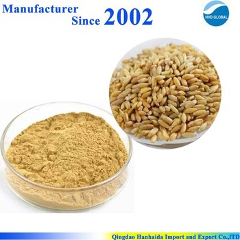 Hot sale & hot cake high quality nature Green Oats Extract , Green Oats P.E.
