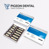 PIGEON DENTAL ACRYLIC TEETH