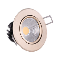 Indoor door Ceiling light fittings,COB ceiling light