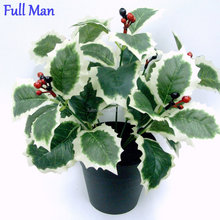 H24cm Plastic Red Berries/Holly Leaves Bush x 7 with Black Plastic Pot for Christmas Decoration