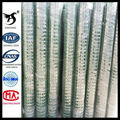zinc coating & PVC coated Wire Mesh Fencing