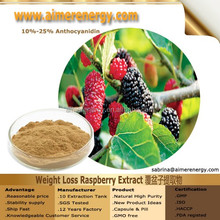 100% Natural Raspberry Extract 10:1, Raspberry Extracts, Raspberry Powder Raspberry Extract