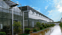 Modern hot galvanizing steel structure of greenhouse