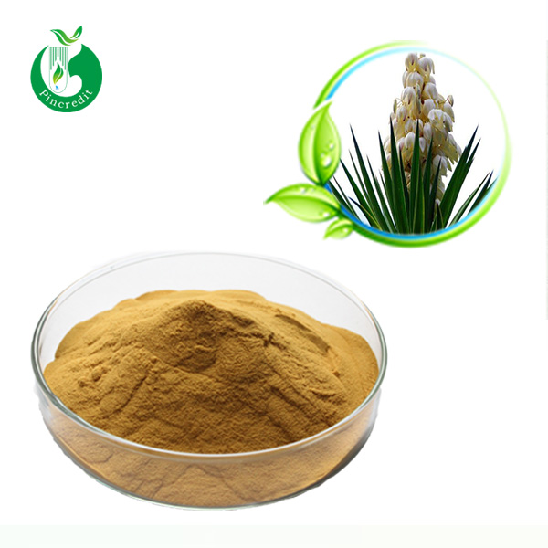Supply product yucca extract yucca extract to feed industry