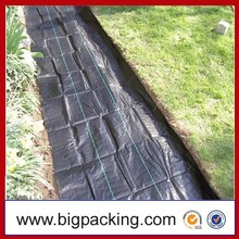 Promotional Ground Cover Net ( Weed Net ) Applied In Agriculture UV Resistant Woven Mat Ground Cover Agricultural Ground Cover