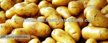 Fresh Potatoes for French Fries