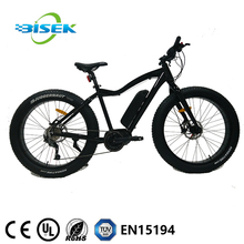 48V 750W Mid Drive Snow electric bike Beach bicycle