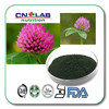 China manufacture Red Clover Flower Extract 40% Isoflavones