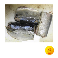 Canned mackerel in own juice canned fish