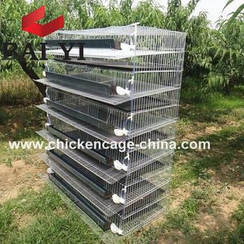 2018 Trade Assurance H Type & A Type Wire Mesh Quail Cage For Sale