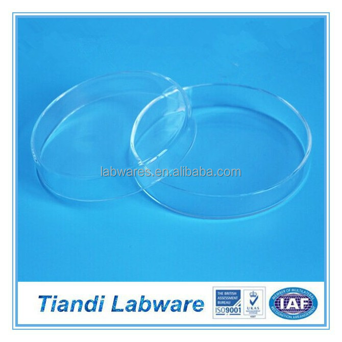 Lab 200mm Glass Petri Dish
